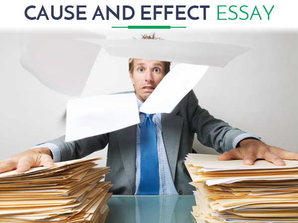 cause and effect essay tips