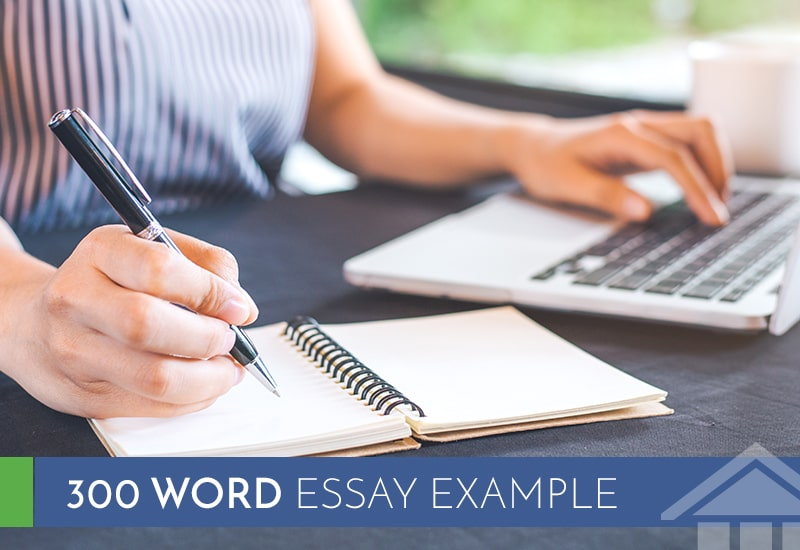 300 Word Essay Example